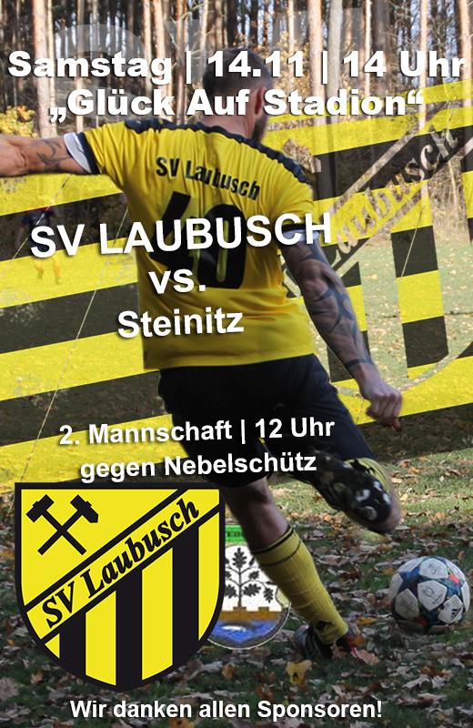sv-laubusch-steinitz-westlausitzer-fussball-verband-wfv